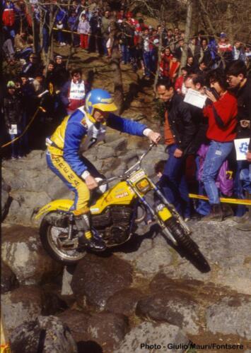 8-Schreiber-Olot'84